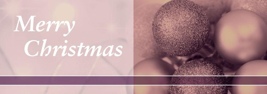 CategoriesHeader_Christmas_898x31759b15bfe929a4